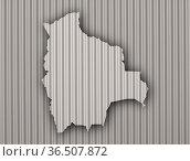 Karte von Bolivien auf Wellblech - Map of Bolivia on corrugated iron. Стоковое фото, фотограф Zoonar.com/lantapix / easy Fotostock / Фотобанк Лори