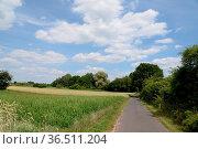 Feldweg, feld, weg, felder, wiese, wiesen, himmel, wolke, wolken,... Стоковое фото, фотограф Zoonar.com/Volker Rauch / easy Fotostock / Фотобанк Лори