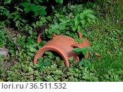 Amphore, Garten, ziergarten, malerisch, pittoresk, deko, dekoration... Стоковое фото, фотограф Zoonar.com/Volker Rauch / easy Fotostock / Фотобанк Лори