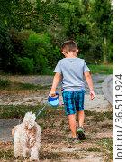 Small child walking his dog on a leash on the roadside. Стоковое фото, фотограф Zoonar.com/Morad HEGUI / easy Fotostock / Фотобанк Лори