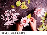 Handmade DIY making realistic flowers from foam, top view with woman... Стоковое фото, фотограф Zoonar.com/Oksana Shufrych / easy Fotostock / Фотобанк Лори