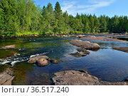 Bridge Threshold on the Pongoma River, North Karelia, Russia. Стоковое фото, фотограф Сергей Трофименко / Фотобанк Лори