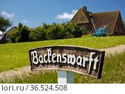 Die Backenswarft, Hallig Hooge, Nordfriesland, Schleswig-Holstein... Стоковое фото, фотограф Zoonar.com/Stefan Ziese / age Fotostock / Фотобанк Лори