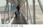 Boarding passengers on a flight. Редакционное видео, видеограф Игорь Жоров / Фотобанк Лори
