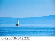 Segelboot auf blau schimmerndem Bodensee bei sonnigem Wetter und ... Стоковое фото, фотограф Patrick Frischknecht / age Fotostock / Фотобанк Лори