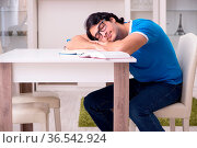 Young handsome student studying at home. Стоковое фото, фотограф Zoonar.com/Elnur Amikishiyev / easy Fotostock / Фотобанк Лори
