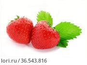 Frische Erdbeeren mit Blatt freigestellt. Стоковое фото, фотограф Zoonar.com/Petra Schüller / easy Fotostock / Фотобанк Лори