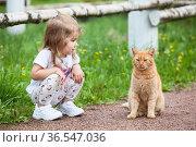 Little Caucasian girl sitting on pathway with red cat. Стоковое фото, фотограф Кекяляйнен Андрей / Фотобанк Лори