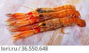 Raw Norway lobster on wooden table. Стоковое фото, фотограф Яков Филимонов / Фотобанк Лори