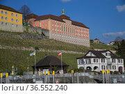 Staatsweingut, Meersburg, Baden-Wuerttemberg, Deutschland| Meersburg... Стоковое фото, фотограф Zoonar.com/Günter Lenz / age Fotostock / Фотобанк Лори