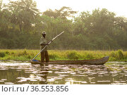 Fisherman standing in dug out canoe,   Lagoons of Cufada ( Lagoas de Cufada)  Natural Park, Guinea Bissau. February 2015. Стоковое фото, фотограф Enrique Lopez-Tapia / Nature Picture Library / Фотобанк Лори