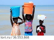 Portrait of three girls with containers on head  to collect water, Orango Island, Bijagos UNESCO Biosphere Reserve, Guinea Bissau, February 2015. Стоковое фото, фотограф Enrique Lopez-Tapia / Nature Picture Library / Фотобанк Лори