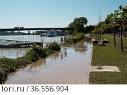 View of Rhine High Water in Speyer in June 2013 on a sunny day. Стоковое фото, фотограф Zoonar.com/Nailia Schwarz / easy Fotostock / Фотобанк Лори