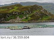 Fischfarm für Lachse in einer Bucht an der schottischen Küste, Sutherland... Стоковое фото, фотограф Zoonar.com/Pant / easy Fotostock / Фотобанк Лори