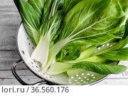 Frisch gewaschene Blätter von Pak Choi, Chinesischer Senfkohl. Стоковое фото, фотограф Zoonar.com/Nailia Schwarz / easy Fotostock / Фотобанк Лори