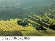 Neckartal, Bäume, Wiesen, Schatten, Morgenlicht. Стоковое фото, фотограф Zoonar.com/Gerd Herrmann / age Fotostock / Фотобанк Лори