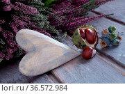 Holzherz mit Textfreiraum und herbstliche Deko auf verwittertem Holz. Стоковое фото, фотограф Zoonar.com/Petra Schüller / easy Fotostock / Фотобанк Лори