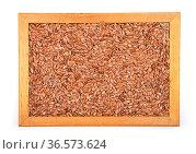 Leinsamen - Flax seed in frame. Стоковое фото, фотограф Zoonar.com/lantapix / easy Fotostock / Фотобанк Лори