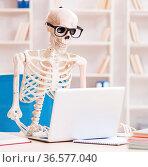 The skeleton businessman working in the office. Стоковое фото, фотограф Zoonar.com/Elnur Amikishiyev / easy Fotostock / Фотобанк Лори