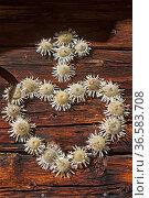 Almhüttendetail Herz und Kreuznaus Silberdisteln gefertigt. Стоковое фото, фотограф Zoonar.com/Eder Christa / age Fotostock / Фотобанк Лори