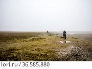 ESY-059857123. Стоковое фото, фотограф Zoonar.com/Karl Heinz Spremberg / easy Fotostock / Фотобанк Лори