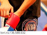 Vincent Feigenbutz zieht sich die Boxhandschuhe an vor dem Training... Стоковое фото, фотограф Zoonar.com/Joachim Hahne / age Fotostock / Фотобанк Лори