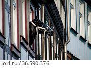 Pferdekopf an einer ehemaligen Schmiede in Wernigerode. Стоковое фото, фотограф Zoonar.com/Martina Berg / easy Fotostock / Фотобанк Лори