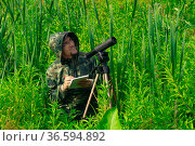 Birdwatcher records the results of the observations while standing among the tall grass in the wetland. Стоковое фото, фотограф Евгений Харитонов / Фотобанк Лори