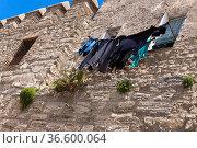 WŠscheleine an der Burgmauer in einem kleinen Andalusischen Dorf. Стоковое фото, фотограф Zoonar.com/Karl Heinz Spremberg / easy Fotostock / Фотобанк Лори