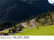 Serpentinenstraße, Bergstraße, Tirol, Österreich  Mountainroad, Tyrol... Стоковое фото, фотограф Zoonar.com/Günter Lenz / age Fotostock / Фотобанк Лори
