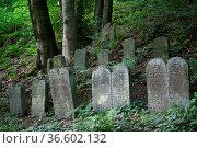 Alter Friedhof in Schwalenberg (Kreis Lippe, NRW) Стоковое фото, фотограф Zoonar.com/Martina Berg / easy Fotostock / Фотобанк Лори