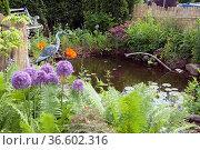 Gartenteich, Wasser, Wasserpflanze, Стоковое фото, фотограф Zoonar.com/Manfred Ruckszio / age Fotostock / Фотобанк Лори