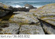Cote Sauvage, Quiberon, Bretagne, frankreich, küste, ufer, felsen... Стоковое фото, фотограф Zoonar.com/Volker Rauch / easy Fotostock / Фотобанк Лори
