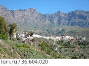 San Bartolome, Gran Canaria, kanaren,kanarische inseln, spanien,bergdorf... Стоковое фото, фотограф Zoonar.com/Volker Rauch / easy Fotostock / Фотобанк Лори
