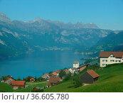Obstalden, dorf, bergdorf, kirche, walensee,see, schweiz, alpen, alpin... Стоковое фото, фотограф Zoonar.com/Volker Rauch / easy Fotostock / Фотобанк Лори