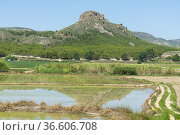 Salmerón Volcano. Moratalla. Murcia, Spain, Europe. Стоковое фото, фотограф Antonio Real / age Fotostock / Фотобанк Лори