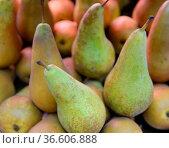 Birnen, birne, frucht, obst, früchte, markt, wochenmarkt, lebensmittel... Стоковое фото, фотограф Zoonar.com/Volker Rauch / easy Fotostock / Фотобанк Лори