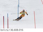 Thomas Grandi, Kanada,FIS Ski Weltcup Slalom der Herren, Kandahar... Стоковое фото, фотограф Zoonar.com/Günter Lenz / age Fotostock / Фотобанк Лори