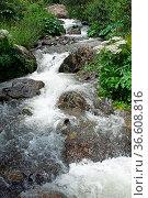 Creek in the Gveleti High Valley, beautiful landscape along the Georgian... Стоковое фото, фотограф Zoonar.com/Alexander Ludwig / easy Fotostock / Фотобанк Лори