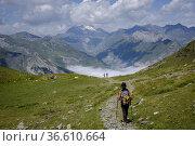 Hill of Hourqueta d'Allanz, Pyrenees National Park, Hautes-Pyrenees... Редакционное фото, фотограф Tolo Balaguer / age Fotostock / Фотобанк Лори