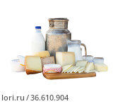 Fresh dairy products on table on background of cows in stall. Стоковое фото, фотограф Яков Филимонов / Фотобанк Лори