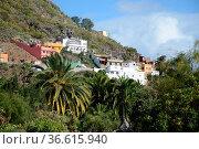 Dragonal, Gran Canaria, kanaren, kanarische inseln, dorf, häuser,... Стоковое фото, фотограф Zoonar.com/Volker Rauch / easy Fotostock / Фотобанк Лори
