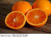 Citrus x sinensis Tarocco, Halbblutorange, Half-blood orange. Стоковое фото, фотограф Zoonar.com/Peter Himmelhuber / age Fotostock / Фотобанк Лори