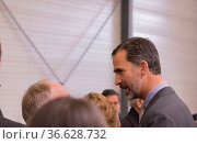 König Philip VI. von Spanien (im Nadelstreifenanzug mit (Kinn-) Bart... Стоковое фото, фотограф Zoonar.com/Robert B. Fishman / age Fotostock / Фотобанк Лори