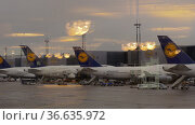 Lufthansa hub at the airport of Frankfurt, Germany (2017 год). Редакционное фото, фотограф Данил Руденко / Фотобанк Лори