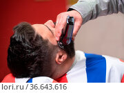 Barber shaving the beard of a handsome bearded man with an electric... Стоковое фото, фотограф Zoonar.com/DAVID HERRAEZ CALZADA / easy Fotostock / Фотобанк Лори
