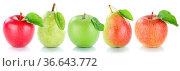 Apfel Früchte Frucht Birne Birnen Äpfel Obst frisch in einer Reihe... Стоковое фото, фотограф Zoonar.com/Markus Mainka / easy Fotostock / Фотобанк Лори
