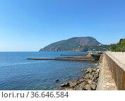 Вид на гору Аю-Даг с набережной Партенита, Крым. Стоковое фото, фотограф Мария Кылосова / Фотобанк Лори