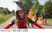 Halloween kids going to collect candy. Trick or treating. Guising. Jack o lantern. Children in carnival costumes outdoors. Witch and skeletons. Friends with orange balloons. celebrate halloween. Стоковое видео, видеограф Ирина Ткачук / Фотобанк Лори