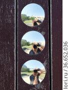 Kreisrunde Spiegel auf einem Kinderspielplatz. Стоковое фото, фотограф Zoonar.com/Karl Heinz Spremberg / easy Fotostock / Фотобанк Лори